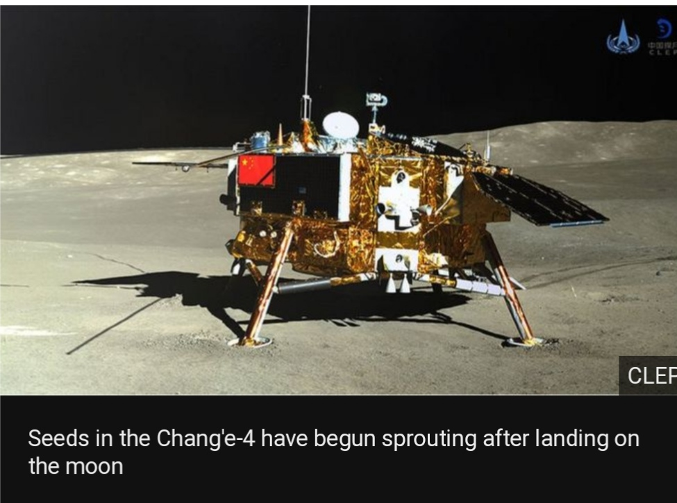 China's Moon mission sees first seeds sprout